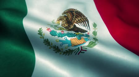 sas : Mexico flag waving in the wind. National flag of Mexico. Sign of Mexico seamless loop animation. 4K Stock mozgókép