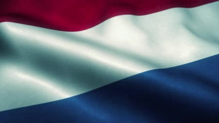 holandês : Netherlands flag waving in the wind. National flag of Netherlands. Sign of Netherlands seamless loop animation. 4K Vídeos
