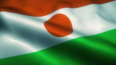 official : Niger flag waving in the wind. National flag of Niger. Sign of Niger seamless loop animation. 4K