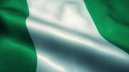 nişanlar : Nigeria flag waving in the wind. National flag of Nigeria. Sign of Nigeria seamless loop animation. 4K