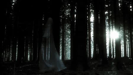 fantasma : womans ghost in the dark spooky forest
