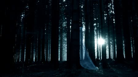 испуг : womans ghost in the dark spooky forest