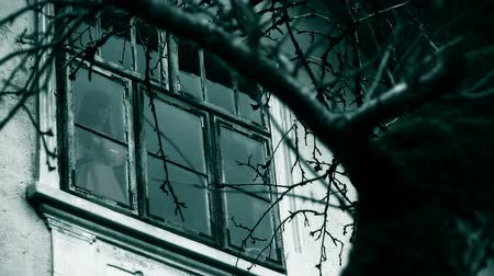 image house : Horror scene Stock Footage