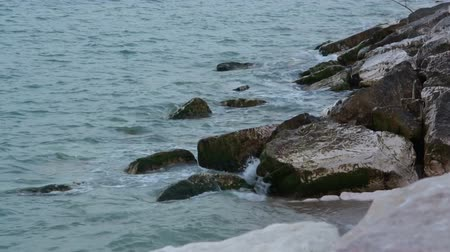 cena de tranquilidade : The stones are covered with moss. A rising tide summer evening at sunset.