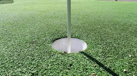 umělý : Golf ball and flag stick on artificial turf practice putting green - competition and sports concept