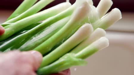 овощи : Fresh green onions from garden soaking under water at kitchen sink - Organic cooking concept