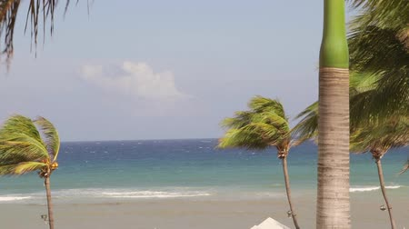 jamaica : Tropical beach resort Saint James Parish Montego Bay Jamaica