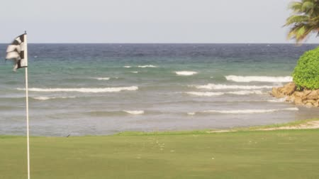 kurs : Caribbean Resort golf course along the shores of tropical island paradise Montego Bay, Jamaica Wideo