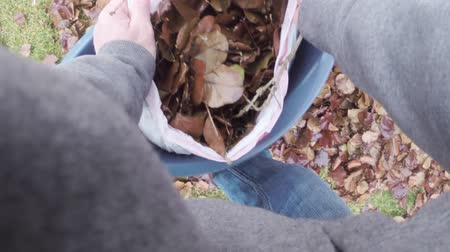 lixo : Autumn leaves in trash bag Stock Footage