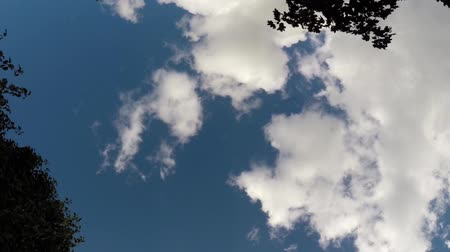 bílé mraky : Clouds moving across bright blue sky