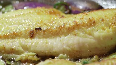 preparado : Fish fillet cooking in oil on stovetop frying pan Stock Footage
