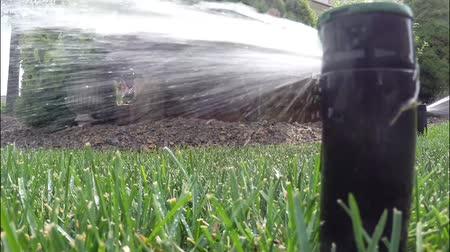 Automatic irrigation system watering lawn