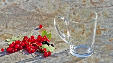 kalcium : Glass cup with pouring milk and red currants berries in day light Stock mozgókép