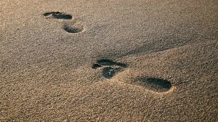 следы : Footprint on the sand erasing wave