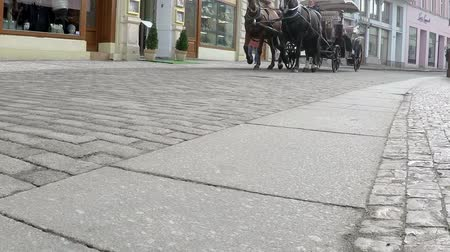 koń : Horse pulling a carriage on pavement of old town, slow motion