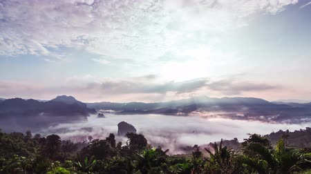 múltiplo : Morning Mist and sunrise, Thailand.