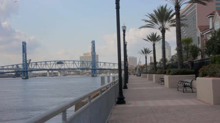homlokzatok : Riverwalk on the north bank of the St. Johns River in downtown Jacksonville Florida with palm fronts swaying in the breeze. Stock mozgókép