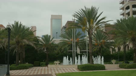 kanarya : Tropical feel courtyard with fountain and majestic Canary Island date palms with Jacksonville skyscrapers in background