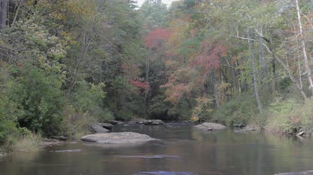 Chauga river in the South Carolina mountains on a windy autumn day Vídeos