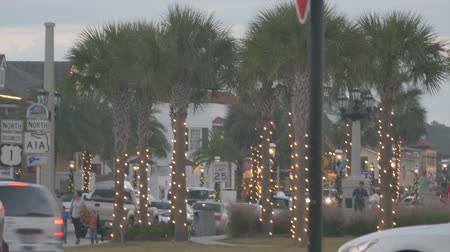 ST AUGUSTINE , FLORIDA – December 6:Christmas lights on palms along North A1A in downtown St. Augustine , December, 6, 2014 in St. Augustine, Florida.