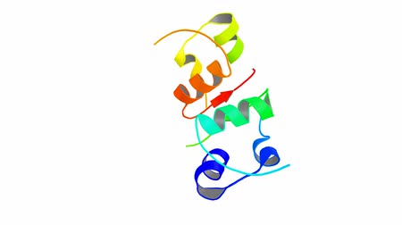 peptide : Insuline molecule 3d structure. Insulin is a peptide hormone produced by beta cells in the pancreas, and regulates the metabolism