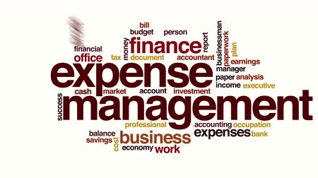 despesas : Expense management animated word cloud