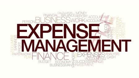 despesas : Expense management animated word cloud. Kinetic typography.