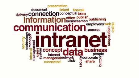 conectado : Intranet animated word cloud. Stock Footage