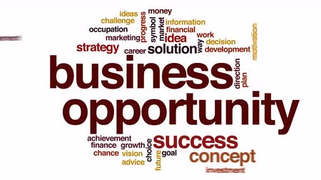 felhőzet : Business opportunity animated word cloud. Stock mozgókép