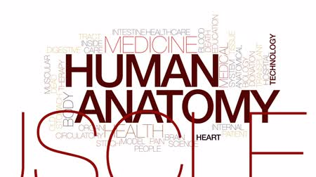 szpital : Human anatomy animated word cloud, text design animation. Kinetic typography.