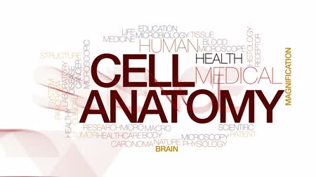 fyziologie : Cell anatomy animated word cloud, text design animation. Kinetic typography.