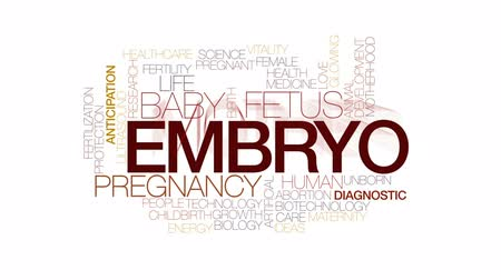 usg : Embryo animated word cloud, text design animation. Kinetic typography.