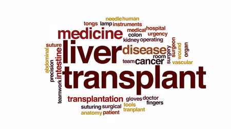 játra : Liver transplant animated word cloud, text design animation. Dostupné videozáznamy