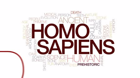 idade média : Homo sapiens animated word cloud, text design animation. Kinetic typography.