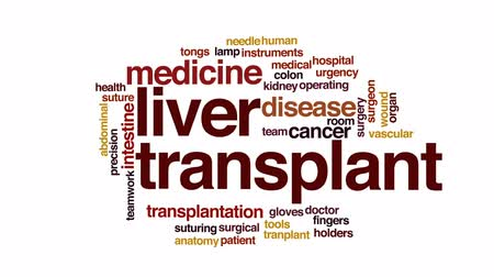 seb : Liver transplant animated word cloud, text design animation. Stock mozgókép
