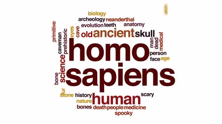 primeval : Homo sapiens animated word cloud, text design animation.