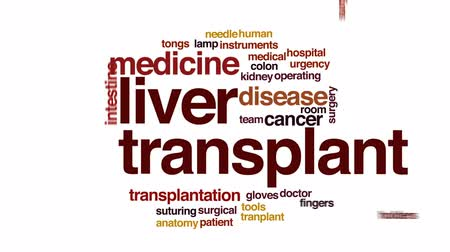 доктор : Liver transplant animated word cloud, text design animation. Стоковые видеозаписи