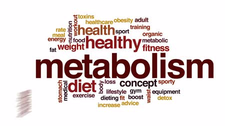 perda de peso : Metabolism animated word cloud, text design animation.