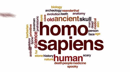 evolução : Homo sapiens animated word cloud, text design animation.
