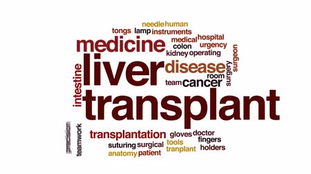 rana : Liver transplant animated word cloud, text design animation. Wideo