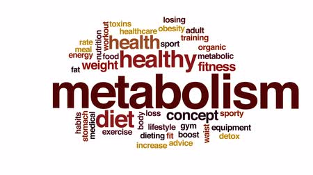 obesidade : Metabolism animated word cloud, text design animation.