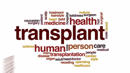 łysy : Transplant animated word cloud, text design animation.