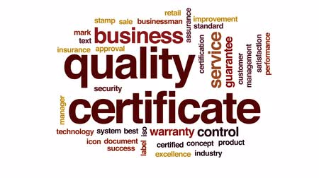 excelência : Quality certificate animated word cloud, text design animation. Stock Footage