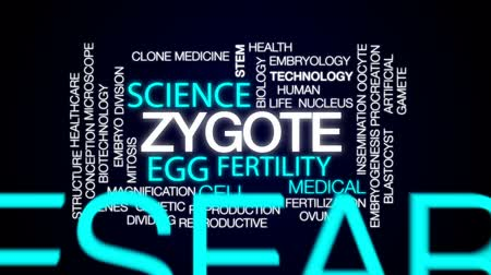 the conception : Zygote animated word cloud, text design animation. Stock Footage