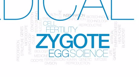 the conception : Zygote animated word cloud, text design animation. Kinetic typography.