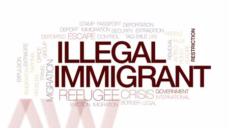 ilegální : Illegal immigrant animated word cloud, text design animation. Kinetic typography.