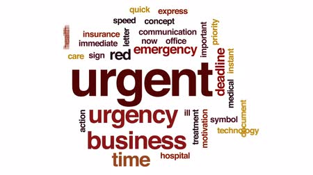 health insurance : Urgent animated word cloud, text design animation.
