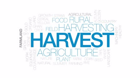 bez szwu : Harvest animated word cloud, text design animation. Kinetic typography.