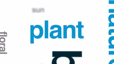 zöld levél : Botany animated word cloud, text design animation.