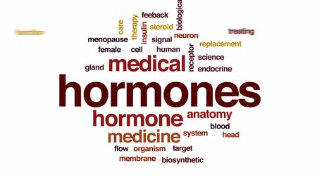 bez szwu : Hormones animated word cloud, text design animation.